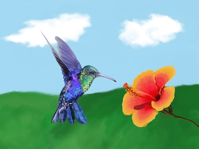 The very hungry Hummingbird nature hummingbird hibiscus bright colours bright colors color colour design illustration contemporary art photoshop digital painting