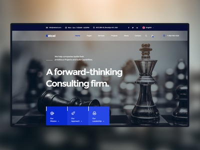 Netcel - Business Consulting Website Theme Homepage Concept