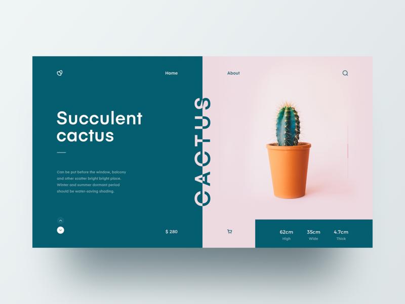 Cactus web design web 设计 design