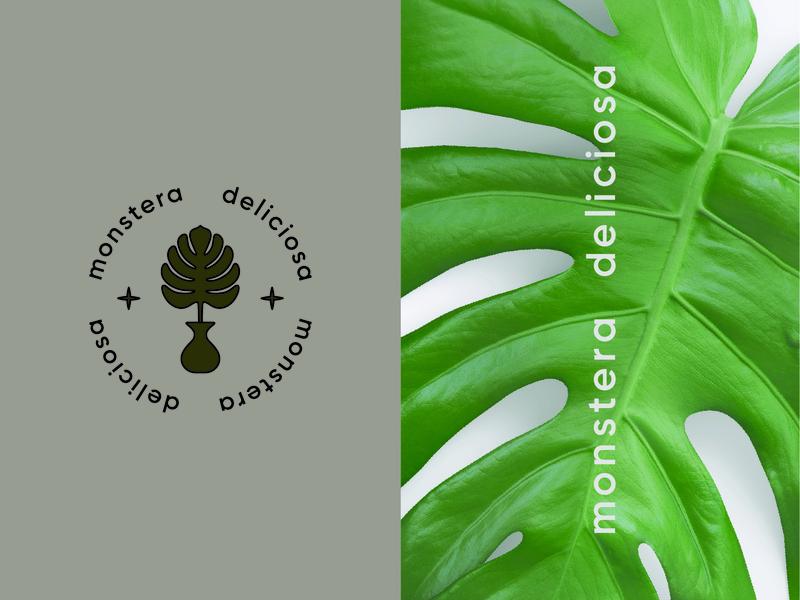 𝕞𝕠𝕟𝕤𝕥𝕖𝕣𝕒 𝕕𝕖𝕝𝕚𝕔𝕚𝕠𝕤𝕒 🌿 identity green typogaphy icon stars mockup brand identity brand design vector photography plant shop plants plant monstera art minimal typography branding logo design