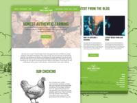 """""""Three Dudes Farm"""" Website Design"""