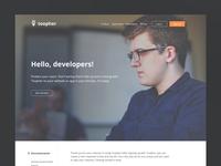 Developer Portal WIP
