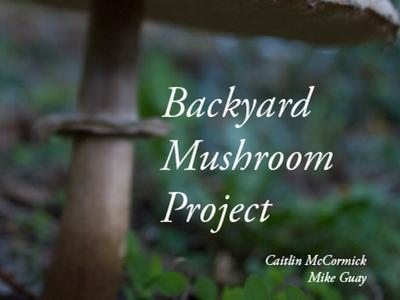 Backyard Mushroom Project Cover