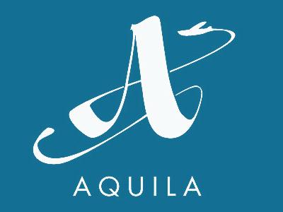 aquila logo typography elegant handwriting