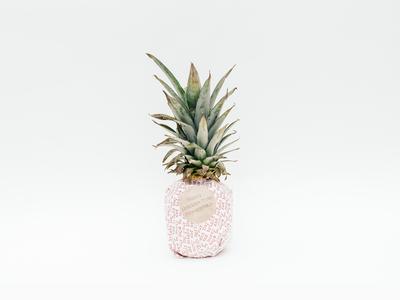Happy Holidays Dribbble! christmas holidays photography pineapple