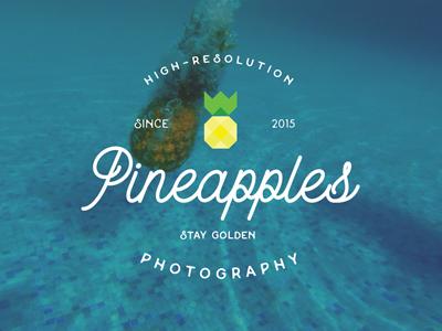 Pineapples since 2015 photos logo pineapple