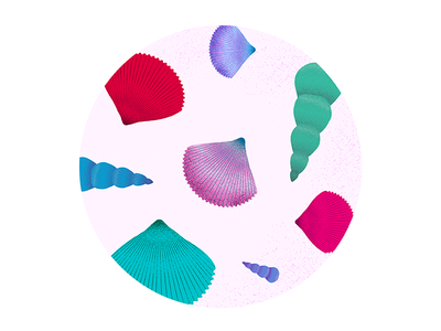 Shells art design graphic design artwork illustration sea shells