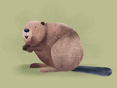 Beaver nature illustrationart illustration asterysk studio graphic design forest animals forest beaver artwork art