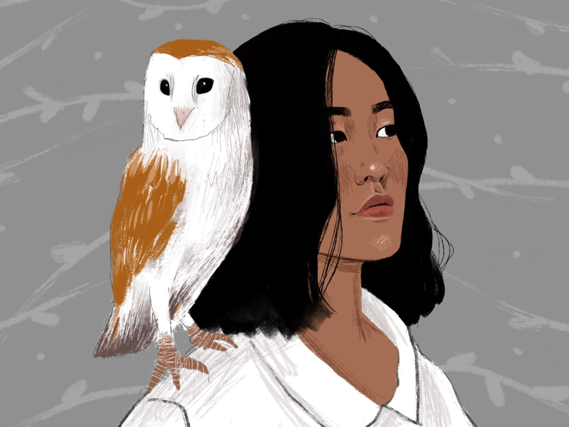 Girl and owl procreate procreateapp owl draw drawing character girl