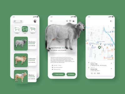 Qurban Qita Mobile App