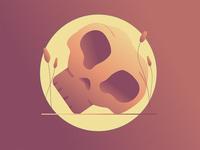 Le petit crâne