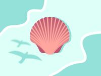 Sunny Seashell