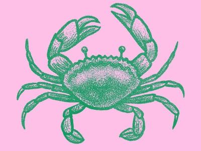 Cancer Crab stipple design zodiac drawing procreate illustration ocean beach crab cancer