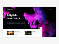 Landing Page Daily UI Challenge #003