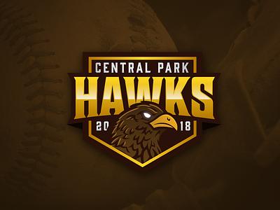 Central Park Hawks Logo Concept gold brown yellow illustration esports esport sports bird sport baseball hawk