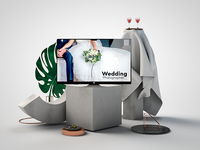 Wedding Photographer | 3D Artwor