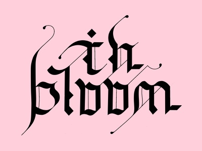 in bloom procreateapp procreate lettering art letters black alternate gothic alternates experimental tipography lettering type font gothic goth blackletter