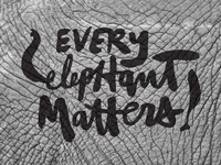 Every Elephant Matters