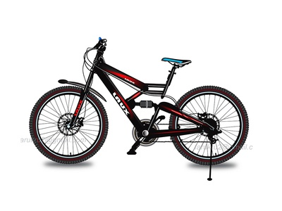 Cycle_Vector