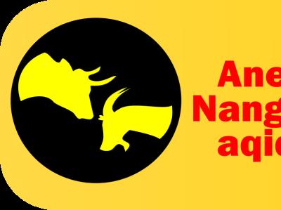 aneuk nanggroe aqiqah branding logo
