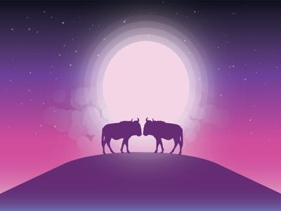 Love in wild animal nature sky stars moon digital art graphic design illustrator