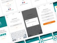 App Log in Interface