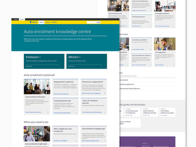 Pension Information UI Design web design design ui