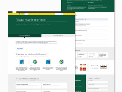 Private Health Insurance UI Design web design health insurance design ui