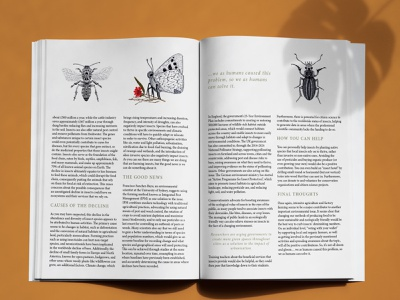Bloom In Doom Mag design publication design magazine bloomindoom
