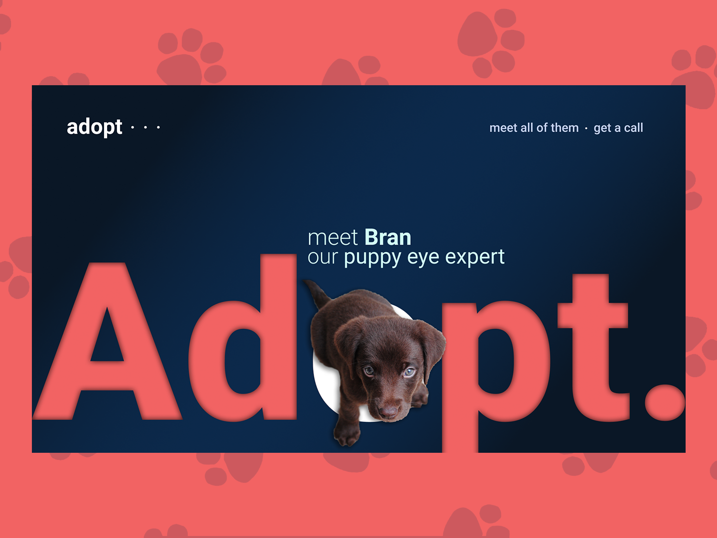 Adopt webdesign web adopt dog ui design animal