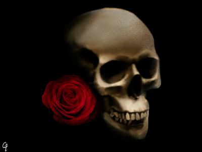 Skull and Rose abstract skull illustration photoshop design