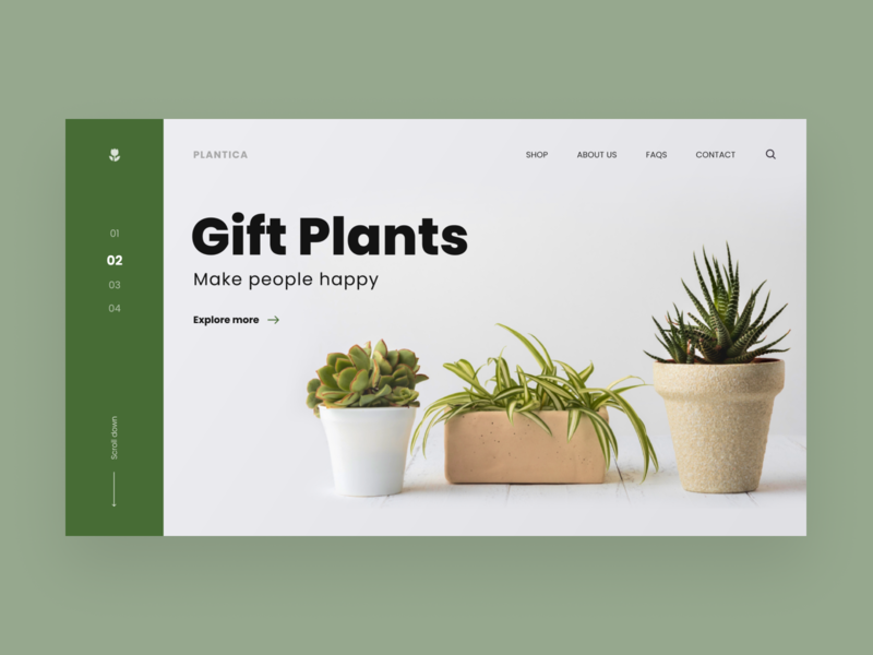 Plantica online store banner design hero section uiux webdesign typography design