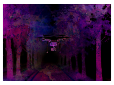 Gingoko night vision night insect fly drive purple beauty technology usa puple dark forest explore
