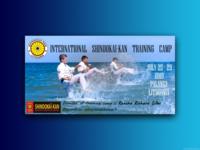 Shindokai kan - Karate Summer Camps Advertising Flyer