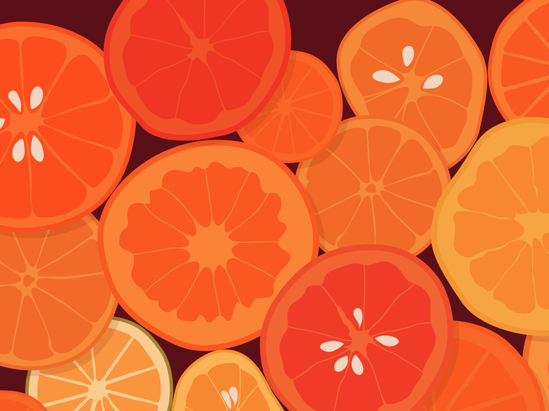 Oranges illustration fruits vector oranges