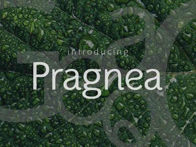 Pragnea Sans Serif