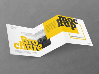 Tri Fold Brochure designs, themes, templates and