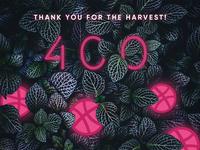 400 Followers of ServoCode