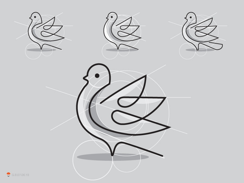 Pigeon 01
