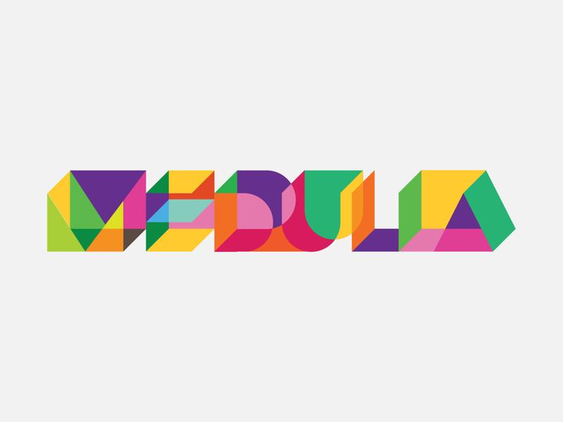 medulla design brand puzzle game identity logo