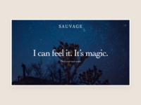 Dior Sauvage Shopping Experience - Landing Page
