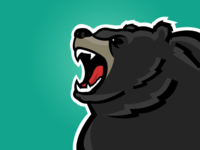 Varsity Bear Graphic