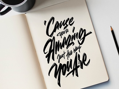 cause you're amazing just the way you are logotype typography handlettering