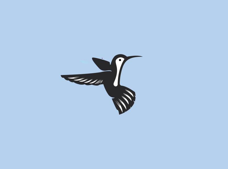 Humming bird falcon eagle humming bird colibri hummingbird web media monoline animal vector illustration branding company design logo