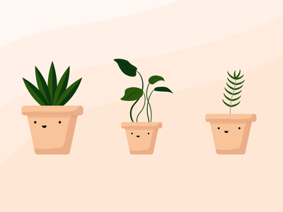Plant illustrations plants vector illustration adobe xd adobe illustrator