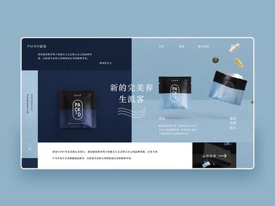 web design08