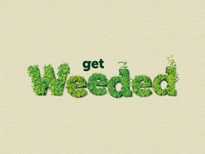 Weeded logo design green weeds organic
