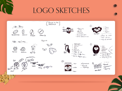 COLLEGE PROJECT : BRAND CREATION | LOGO SKETCHES - OWL BEAN vector art concept typography minimal giudelines brand product design assignment photoshop ui branding graphic design web design web drawing illustrator sketch illustration art logo