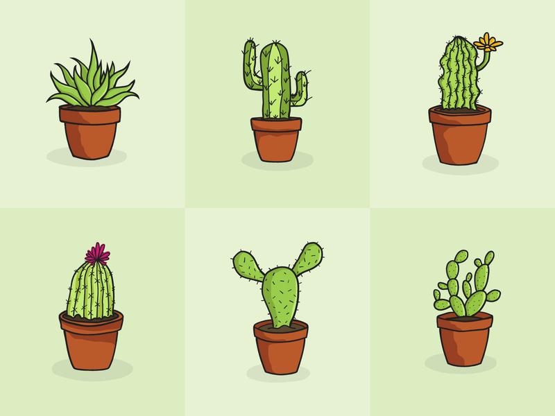 Succulents simple illustration clean simple designer vector succulents lofi illustration art illustration