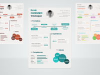 Infographic resume .PSD